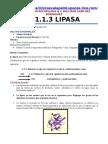 QUIMICA CLINICA-LIPASA