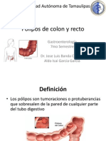 Pólipos de colon y recto ALDO