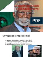 Evaluaci+-ªn del estado mental en el adulto mayor