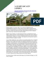 Uso de La Ayahuasca en Takiwasi
