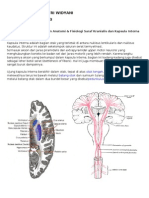 Pbl s2 Neuro 2010