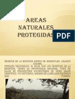 AREAS PROTEGIDAS PRIMEROS.pptx