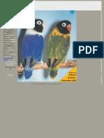 Aves Magacine Dic i on 7
