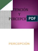 Percepcion Expo Psicol. Gral. Completa