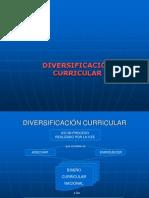 Diversificacion Curricular