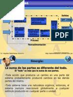 LAS ORGANIZACIONES Y SISTEMAS 30-05-2012.ppt