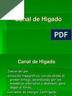 Canal de Higado