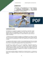 TEMA 4. Badminton.campeonato