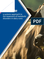 Metabolase - A Systems Approach to Transition Cow Therapy