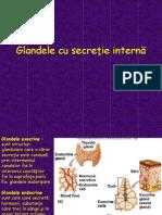 Glandele cu secreţie internă - studenti