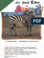 ZOOANIMALS.pdf