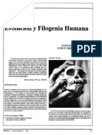 Evolucion y Filogenia Humana