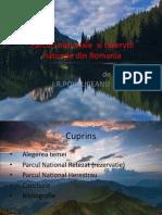 Parcuri Nationale Si Rezervti Naturale Din Romania