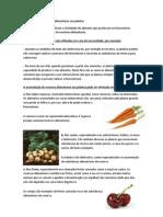 Acumulação de reservas alimentares nas plantas.docx