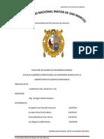 inorganica informe N10