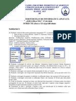 2010 Informatica Concursul 'INFO-PRACTIC' Clasa a XI-A M2 Subiecte