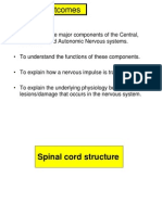 Brain Spinal Cord Notes