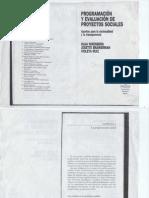 Programacion y Evaluacion de Proyectos Sociales