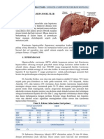 skenario 2 Blok Neoplasia Karsinoma Hepatoseluler