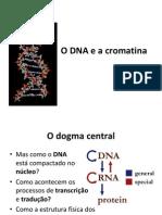 Aula 3 EmpacotamentoDoDNA
