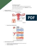 картинки менстр
