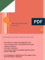 Enzyme Reactors