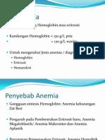 Antianemia Februari 2013