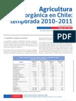4. Agricultura Organica en Chile