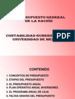 presupuesto publlico gubernamental