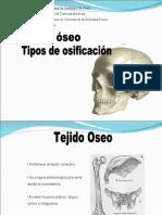 CT3 Tejido Oseo y Osificación