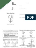 Manual Manejo Areas Verdes Folleto Practico