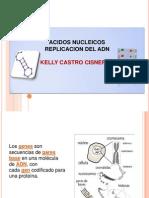 DIAPOS ACIDOS NUCLEICOS