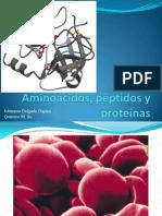 Clase 3 Amino Cidos p Ptidos y Prote Nas