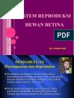 Repro Betina Ppt