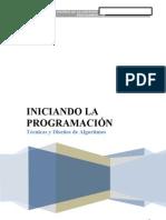 Libro - Iniciando La Programaci n