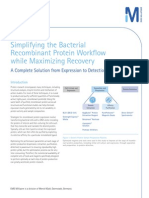 Simplifying the Bacterial Recombinant Protein Workflow while Maximizing Recovery