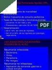 Inflamaciones Pulmonares Agudas