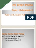 Anatomi Otot Polos