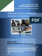 2011 DTSD Pengawasan Dan Penindakan Di Bidang Kepabeanan
