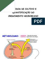 AULA - Metodos de Cultivo e Quantificacao Do Crescimento Microbiano