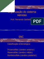 Fisiologia Do Sistema Nervoso 2010 1
