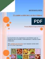 Bacterias Expo..