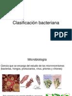 clasificación bacteriana
