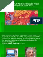 Pp. Plantas Ancestrales de Poder y Esencias Chamanicas de Mexico
