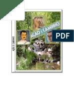 Emmanuel Andre Luiz - AÇÃO  E  CAMINHO.pdf