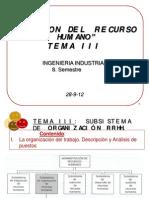 SUBSISTEMA DE ORGANIZACIÓN DEL TALENTO HUMANO.pdf