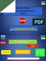 Paparan Peran Dinkes Dalam Program DOTS Di RS 11 April 2013