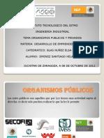 ORG PUB Y PRIV