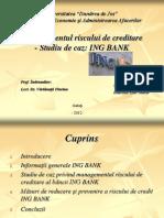 Managementul Riscului de Creditare - Studiu de Caz Ing Bank