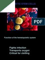 stem cell module.ppt